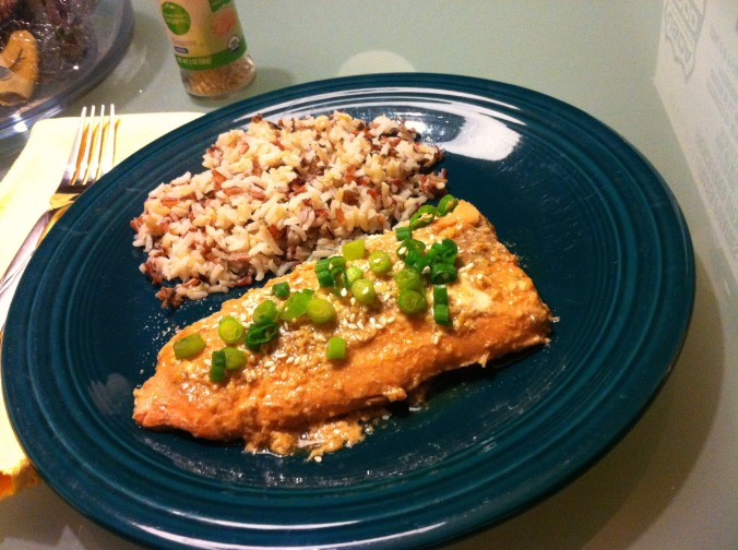 soy sauce and honey glazed salmon (2)